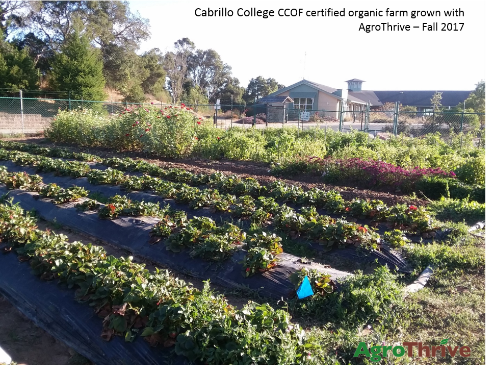 Cabrillo College CCOF certified organic farm